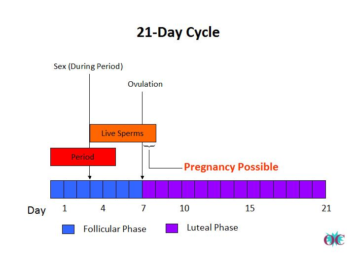 Sex during period can you get pregnant